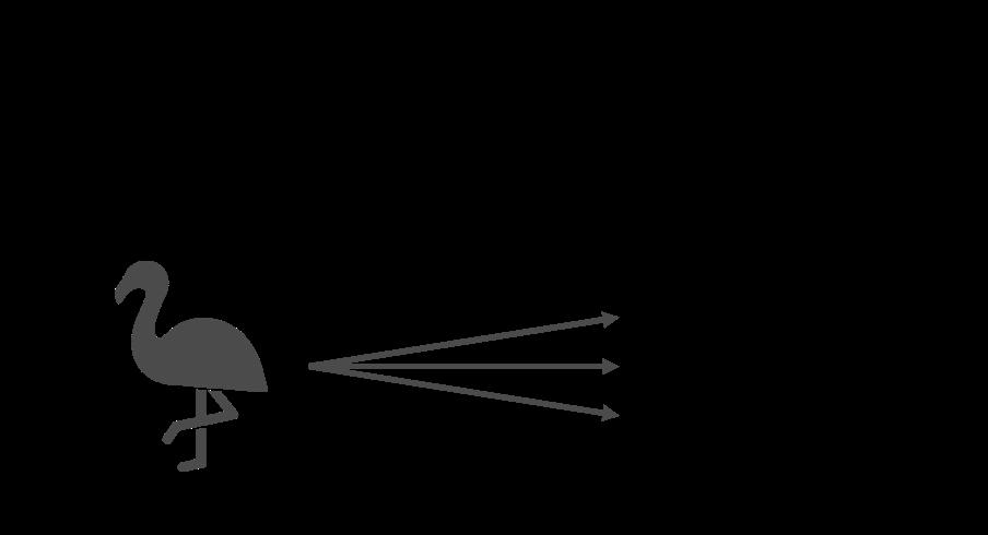 分類のイメージ